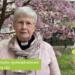Ramadan-hälsning från Sveriges Kristna Råd